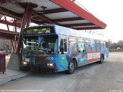 Pace 6035 (TheTransitCamera) Tags: bus suburban orion pace vi pace6035