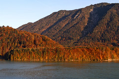 Sylvensteinsee in Autumn (lens buddy) Tags: travel bridge family autumn trees holiday mountains alps fall reflections germany landscape bayern deutschland bavaria scenery peace brother dam lakes calm mybrother stillwaters tranquillity eosdigital beautifulplaces sylvensteinsee picfix eosdeurope