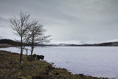 Loch Tulla (DMeadows) Tags: trees lake snow mountains water landscape scotland overcast hills highland shore ripples loch peaks tulla davidmeadows dmeadows yahoo:yourpictures=waterv2 yahoo:yourpictures=yourbestphotoof2012 yahoo:yourpictures=winterv2