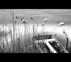 (Balzs Papdi) Tags: winter blackandwhite lake snow detail ice reed monochrome pier boat hungary szeged t magyarorszg jg h tl csnak feketefehr stg bnyat nd rszlet monokrm tglagyr