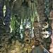 2011-12 - Road Trip - Gibraltar cave