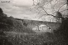 Anatoli (kzappaster (out of order)) Tags: bridge film fuji pentax superia 200asa greece fujifilm larissa anatoli mesuper stonebridge superia200 19mm vivtar thessaly kmount vivitar19mmf38