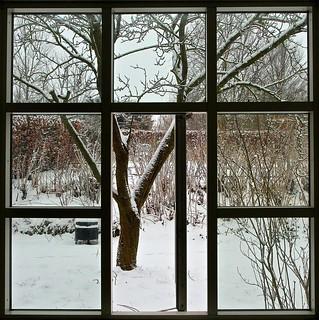 My Bedroom Window January 29th 2012. (Extra).