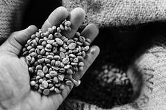 the coffee series (Perret pierre/ zounix / eye in motion) Tags: bw white black nikon noiretblanc dxo d90 zounix
