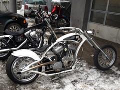 Silver Leaf / Pinstriping - Chopper (Marius Mellebye / 276ccm) Tags: chopper frame motorcycle redneck custom eng buell bobber silverleaf mariusmellebye redneckengineering 276ccm