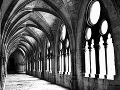 in the old cloister (mujepa) Tags: blackandwhite bw france monochrome noiretblanc gothic nb cloister lorraine couvent saintetienne toul clotre mygearandme ringexcellence dblringexcellence tplringexcellence photographyforrecreationeliteclub rememberthatmomentlevel1