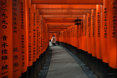 Japan - the red gates of Fushimi-inari (sadaiche (Peter Franc)) Tags: winter red man japan sunrise temple kyoto gate gates path traditional ring tradition 1000 fushimiinari 1000gates