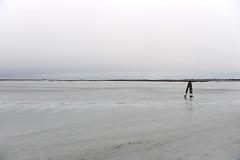 DSC_0288 (Gio (Gio)) Tags: italy ice water natura acqua ghiaccio d700 nikon2470mm28