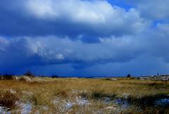 (Sunyami) Tags: blue winter light sea sky ice water colors horizon atmossphere mygearandme