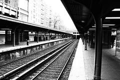 AO3-8046.jpg (Alejandro Ortiz III) Tags: newyorkcity newyork alex brooklyn digital canon eos newjersey canoneos allrightsreserved lightroom rahway alexortiz 60d lightroom3 shbnggrth alejandroortiziii ©2012alejandroortiziii ©2012alejandroortiziii