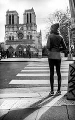 Devant Notre Dame (jfgornet) Tags: paris silhouette ombre notredame mg6362