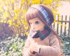 Excited (Tales of Karen) Tags: 3 ball asian shiny doll version may fairy junior bjd resin abjd jointed bluefairy