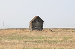 Alone (The Mick Loyd Project) Tags: abandoned farmhouse prairie may172016whitewater
