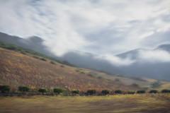 B L U R S C A P E  2 (creonte05) Tags: nikon d7100 blurscape 2016 landscape chile curico eduardomiranda icm blur campo naranjos explore