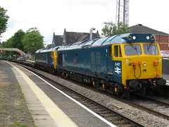 50007 + 50050 on 4K50 Donnington RFT - Crewe Basford Hall at Nantwich 24/05/2016 (37686) Tags: blue hall tits donnington crewe porn milf nantwich rft basford 50007 50050 4k50 50007500504k50donningtonrftcrewebasfordhall passnantwich1539 8latewithalongrakeofintermodalflatsintow 24052016