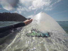 Surfing at Short Sands (Brian Behrens) Tags: oregon surf surfing libtech shortsands lostsurfboards
