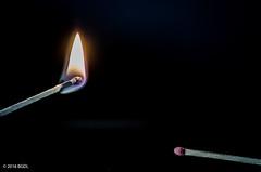 125 ~ 366 (BGDL) Tags: matches weeklytheme matchsticks nikond7000 fireorflame bgdl afsmicronikkor40mm128g flickrlounge lightroomcc goingfor4inarow~366