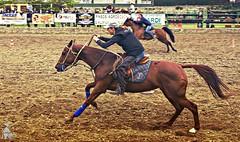 Western Besal-Maig-2016-Mat-041p (vadobuch) Tags: country girona western catalunya garrotxa hpica besal