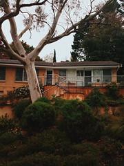 Rainy day in the Mountains (Markus Jaaske) Tags: house building architecture australia bluemountains leura nokia808pureview