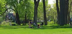 (sfrikken) Tags: park lake yoga place madison acrobat croquet monona yahara