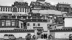(Anwen2010) Tags: china bw monochrome temple fuji buddhism shangrila tibetan yunnan songzanlin xe2