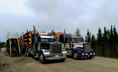Uncle Billy and I (jr-transport) Tags: logging oldschool logger custom heavy peterbilt haul kenworth 379 379x w900l