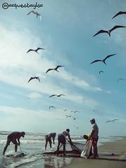 Los viejos y el mar (Taylor Rigby) Tags: ocean sea mar nicaragua caribe pescadores miskito miskitos tuapi