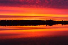 The heat of the sun (Antti Tassberg) Tags: sunset sun lake reflection silhouette espoo lens 50mm prime spring sundown serene jrvi auringonlasku aurinko kevt pitkjrvi laaksolahti