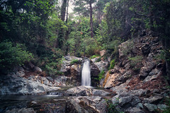 Hidden oasis (Alex Apostolopoulos) Tags: longexposure tree nature water landscape waterfall rocks outdoor sony smooth cyprus vegetation limassol ndfilter landscapephotography sel16f28 sonye16mmf28 ilce6000 sonya6000