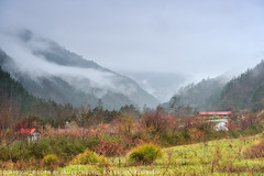 JD9_9642 (james album) Tags:   taiwan taichung travel travelpic    wulingfarm  fog landscape