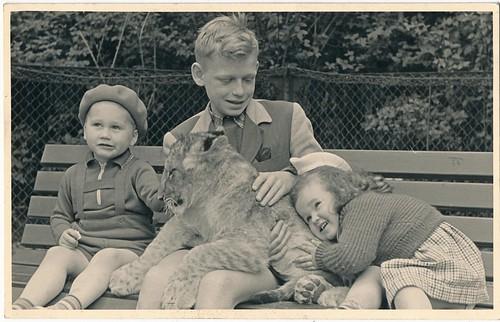 Gevonden  foto    Berlin  Zoo kindren met knuffeltijgertje  j 50