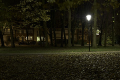 Park Ten Akker, Kortrijk (bm^) Tags: park colour nature night zeiss licht nikon shot belgium belgique nacht belgi natuur westvlaanderen ten parc kortrijk kleur akker d700 planar5014zf  westernflanders parktenakker