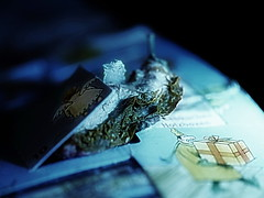 Advent calendar 10. December - Apple of Paradise - Hommage a Friedemann der Teppichweber (hedbavny) Tags: xmas blue schnee white mist snow cold art abandoned yellow trash tomato gold junk paradise outsiderart advent decay assemblage kunst shangrila litter gelb mementomori mold engel blau transition decomposition adventcalendar kalt geschenk mll tomate adventkalender chistmas abfall vanitas fliegen warten vergnglichkeit paradies flgel schimmel verfall unendlich weis naturezamorta endlos ankunft friedemann verwandlung vertrocknet getrocknet erwartung schimmelpilz paradiesapfel christkind weihnachen wienvienna paradeiser sterreichaustria aktionismus solanumlycopersicum eingetrocknet appleofparadise dehumidified friedemann1 friedemannderteppichweber hedbavny friedemannhoflehner ingridhedbavny
