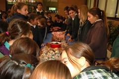 Jornada Solidaria_Colegio Orvalle3