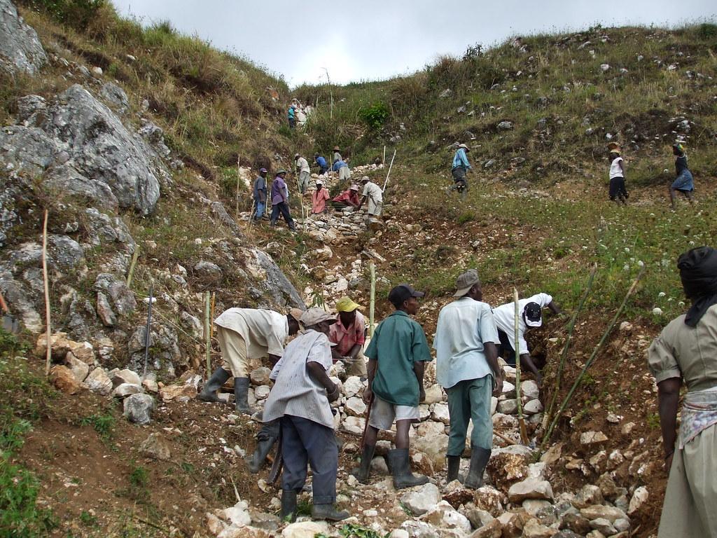 Traitement des ravines (seuils en pierre)