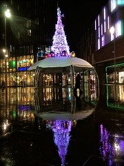 Reflecting Christmas lights (snapnikonnick) Tags: christmas blue light reflection tree water rain night liverpool purple cover