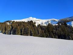 Majestic (M_Strasser) Tags: mountains alps landscape schweiz switzerland landschaft berneroberland berneseoberland augstmatthorn habkern