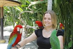 _MG_1884 (James_Roberts) Tags: bali holiday october 2011 tamanburungbalibirdpark