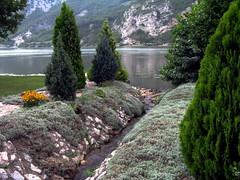 Coming Down to Danube / Explore (kontinova2) Tags: nature river stream brook danube supershot mygearandme mygearandmepremium mygearandmebronze mygearandmesilver mygearandmegold mygearandmeplatinum mygearandmediamond flickrstruereflection1 flickrstruereflection2 flickrstruereflection3
