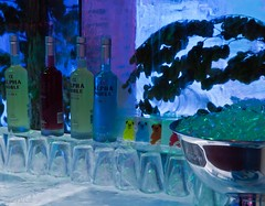 Bear Bar (katrin glaesmann) Tags: winter cold ice bar glasses december hamburg exhibition eis ausstellung icecarving eisskulpturen glser deichtorhallen 2011 icecarver 8c