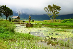 Statue of Dewi Danu in Lake Bratan (myu) Tags: travel blue trees sky bali lake mountains green water misty fog clouds garden indonesia temple photography worship asia south central goddess places tourist east holy scenary hinduism interest hotspot hindi ulun danu denpasar dewi bratan beratan dalem singaraja rupiah candikuning derwa