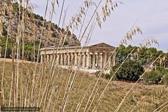 SEGESTA (Jacopo Butini) Tags: summer italy temple mediterraneo arte sicily sicilia paesaggio segesta colonne tempio greektemple magnagrecia tempiogreco