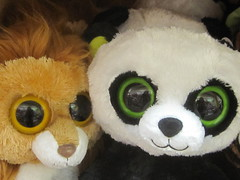 Panda and Lion Cute Stuffed Animals (shaire productions) Tags: toys photo image photograph stuff merchandise imagery