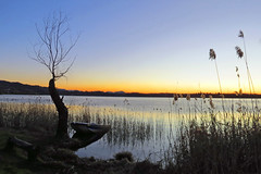 tea time sunset (Marsala Florio) Tags: sunset italy lake canon boats tramonto barche benches lombardia soe panchine colorphotoaward flickraward spiritofphotography laghidibrianza blinkagain bestofblinkwinners blinkagainsuperstars ruby5 flickrstruereflection1 sx40hs bbng canonpowershotsx40hs