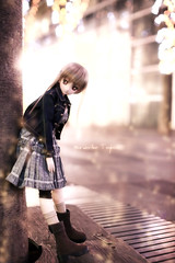 (BorderLine1263) Tags: canon doll sigma  dd   dollfiedream 50mmf14exdghsm 5dmark   06