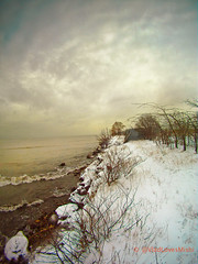The long way home color fisheye (VladLovesMishi) Tags: ocean trees winter lake chicago color tree art beach landscape photography seaside pastel horizon perspective wideangle fisheye chatham conceptual dslr snowfall snowwhite lakefront southshore gawker winterbeach avantgarde paintography winterscen