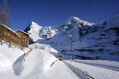 Balm (AincaArt) Tags: mountain berg train schweiz switzerland zug eiger wengen jungfraujoch balm mönch berneroberland berneseoberland lauberhorn wengernalp wengernalpbahn mungga nikond7000 aincaart