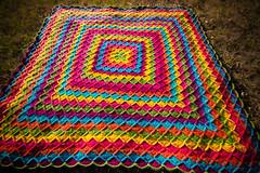 woolie monster (cavale) Tags: pink blue orange color green wool yellow rainbow colorful purple crochet craft yarn blanket afghan brightcolors debbiestoller sigma1020mm wooleater sarahlondon stitchnation fullosheep
