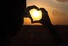 silhouette - سيلويت (fahad alyousef) Tags: شمس بر قلب 2011 فهد سلويت سيلويت الثمامه اليوسف فهداليوسف2010