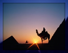 Cairo (Accar) Tags: sunset panorama sun landscape tramonto pyramids sole camels piramidi cammelli ringexcellence dblringexcellence tplringexcellence flickrstruereflection1 flickrstruereflection2 flickrstruereflection3 flickrstruereflection4 flickrstruereflection5 flickrstruereflection6 flickrstruereflection7 flickrstruereflectionexcellenceaward eltringexcellence flickrstruereflectionexcellence trueexcellence1 accar rememberthatmomentlevel4 rememberthatmomentlevel1 rememberthatmomentlevel2 rememberthatmomentlevel3 rememberthatmomentlevel7 rememberthatmomentlevel9 rememberthatmomentlevel5 rememberthatmomentlevel6 rememberthatmomentlevel8